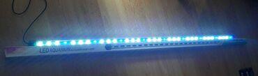 zapchasti folksvagen transporter t4 в Азербайджан: ︽T4 LED -HL 100 (98,5 sm) -23 AZN (18 W)︽Akvaryumun İci ucun tək
