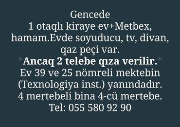 kiraye evlr - Azərbaycan: Mənzil kirayə verilir: 1 otaqlı, 1 kv. m, Gəncə