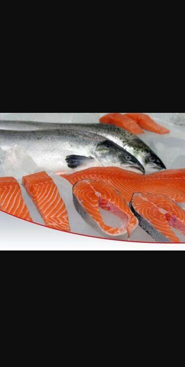Форель. Рыба. Свежая рыба.Исключительно свежая Форель Экологический