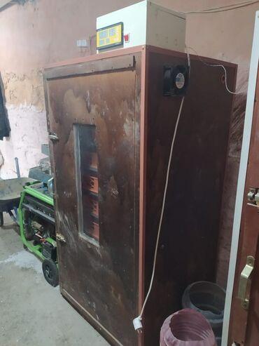 Услуги - Говсаны: Inqubator satilir tam avtomatik muasir 1000 dene yumurtaliqdi