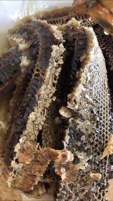 qizlar uecuen bal paltari - Azərbaycan: Bal satılır.Təbiidir.Heç bir qatqısı yoxdur.1kq 25 azn.Bərdə rayonu