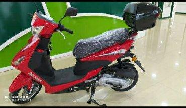 Digər motosiklet və mopedlər - Azərbaycan: Yeni model Moped Moon münasib qiymətə 24 aya qədər Hissə-Hissə