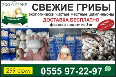 Продукты питания - Кыргызстан: СВЕЖИЕ ГРИБЫ в БИШКЕКЕДобро пожаловать к нам, любители свежих