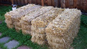Bale sena i pšenične slame od prošlog leta i Gumilko korišćena - Valjevo