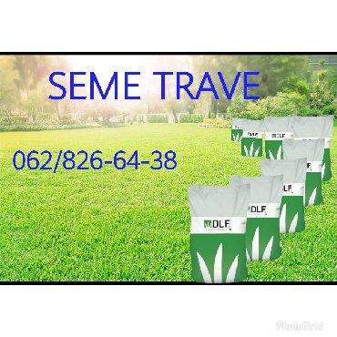 Kuća i bašta - Srbija: Seme trave za vaša dvorišta, poslovne prostore, parkove, sportske