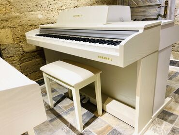 aro 24 2 1 td - Azərbaycan: Elektro pianoKurzweil M