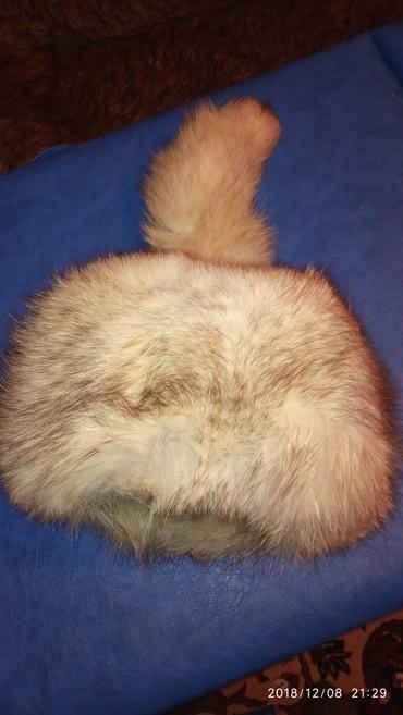 Продам шапку из дикого песца, размер в Кок-Ой