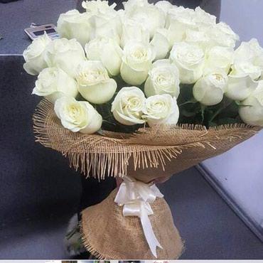 """Голландские белые розы у"""" Согдианы"""" по сууупер ценам от 70 сомов """""""" в Бишкек"""