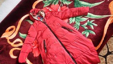 Женская одежда в Беловодское: Женские куртки