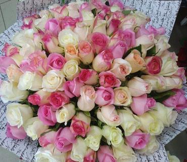 Розовые розы местные по самым низким ценам в Бишкек