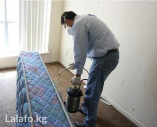 Дезинфекция от клопов тараканов блох в Бишкек