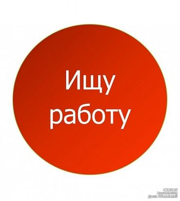 fast hair straightener в Кыргызстан: Повар Шаурмист. Без опыта