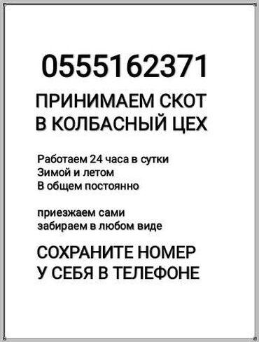 прием макулатуры бишкек адреса в Кыргызстан: Прием скота прием мяса в КОЛБАСНЫЙ ЦЕХЗимой и летом. Днём и