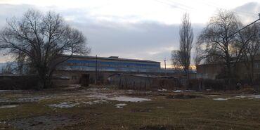продам маламута в Кыргызстан: Продам 5 соток Строительство от собственника