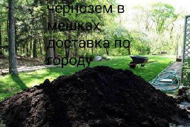 Чернозем перегной в мешках сеяный