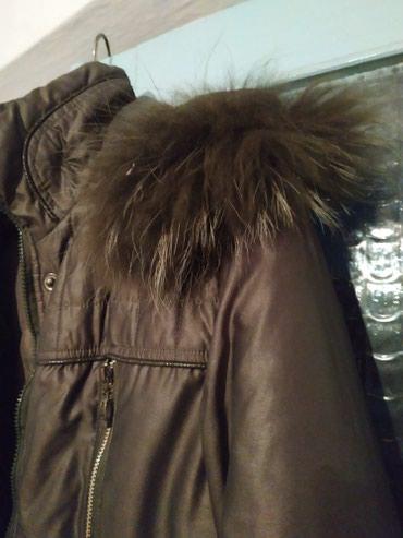 Куртки - Лебединовка: Продаю куртку,зимняя. Капюшон мех,натур. Состояние отличное.Цена 200