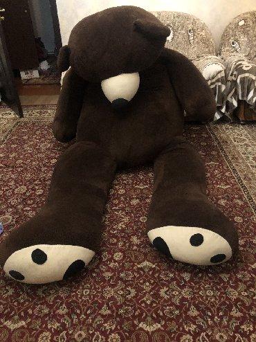 шкуры медведя в Кыргызстан: Продаю плюшевого медведя 200 см