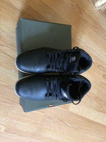 Ostalo | Valjevo: Cipele patike TIMBERLANG kao kove obuvene par puta.broj 41.5