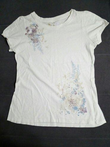 Majica - Nis