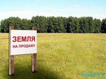 Продаётся земля 1,5 га. с.Восток в Лебединовка