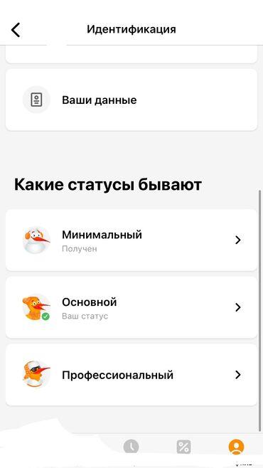Веб-сайты, Мобильные приложения Android, Мобильные приложения iOS | Поддержка, Настройка
