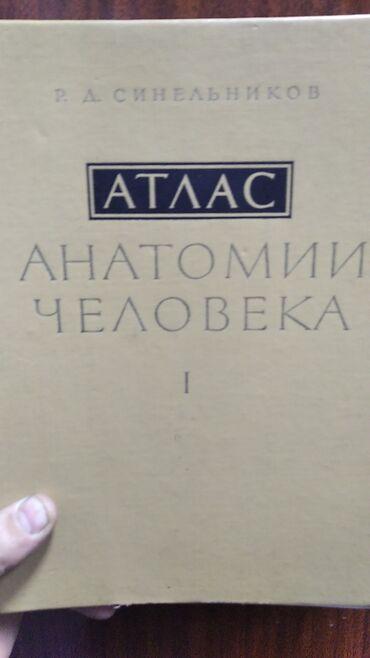 Атлас Анатомии человека (Синельников)