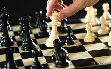 """Репетитор по шахматам. """"В шахматах можно лишь тогда стать большим"""