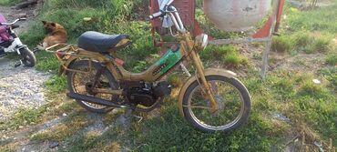 6615 oglasa   VOZILA: Ostali motocikli i skuteri