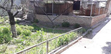 Недвижимость - Исфана: 1800 кв. м, С оборудованием