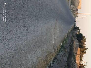 2 sot, Tikinti, Kupça (Çıxarış)