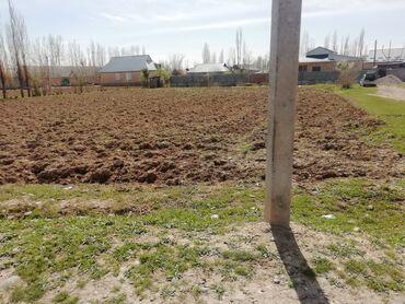 Недвижимость - Базар-Коргон: 25 соток, Для сельского хозяйства, Срочная продажа, Красная книга