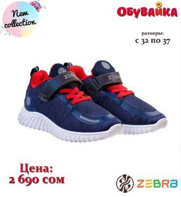 Новое поступление обуви от российской фирмы Zebra Мы работаем каждый