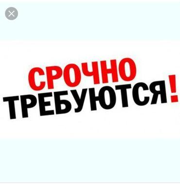 skamejka dlja dachi i sada в Кыргызстан: Продавец-консультант. Без опыта. 5/2