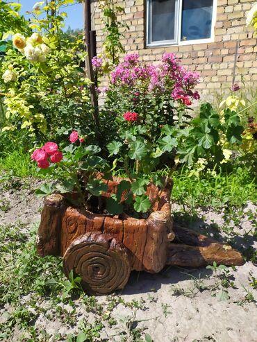 Горшки для растений - Кыргызстан: Вазоны из арт бетона