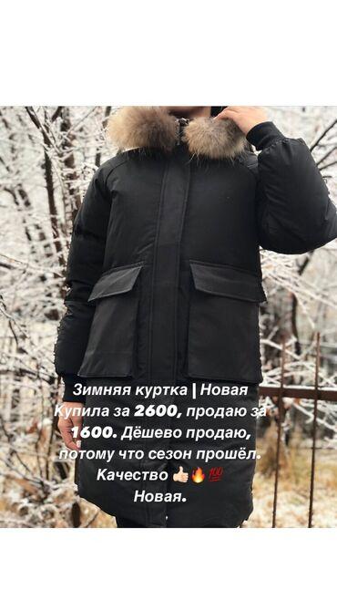 Куртки - Кыргызстан: Куртка | зимняяНовая куртка.Причина продажи: заказала себе, размер не