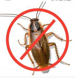 Ультрозвуковой отпугиватель тараканов. Для кофейни, столовой и дома