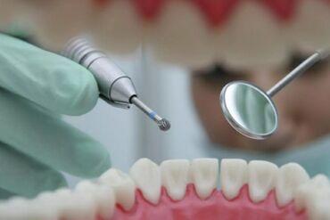 Стоматолог. 1-2 года опыта. Фиксированная оплата