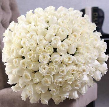 Голландские розы # доставка Свежие цветыКреативное оформление Упаковка