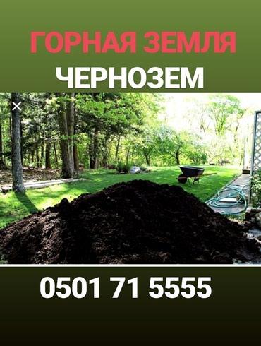Чернозем чернозем чернозем. в Бишкек