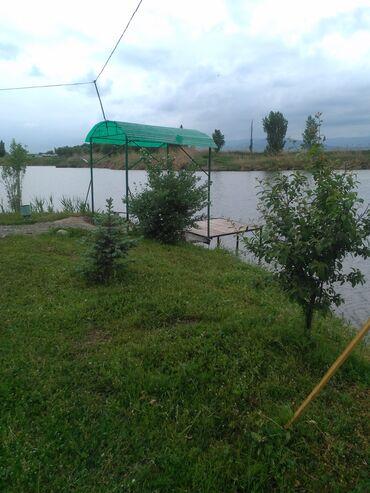 Ищу инвестора для создания рыболовной базы отдыха есть пруды и земля в