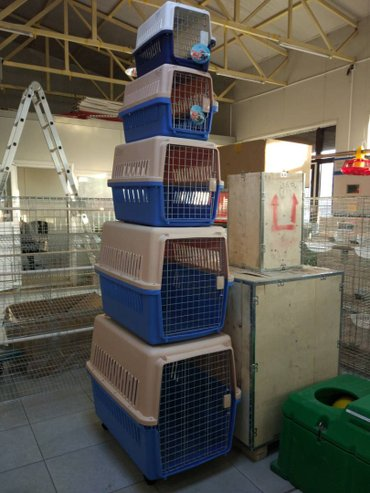 Контейнер для перевозки собак  CJ-FC001 в Бишкек