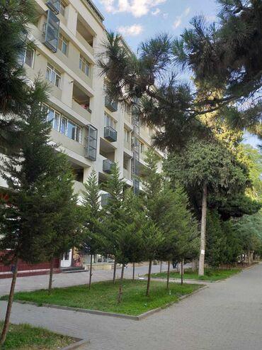 koridorda dolap - Azərbaycan: Mənzil satılır: 3 otaqlı, 70 kv. m