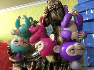 Happy monkey, счастливая интерактивная в Бишкек