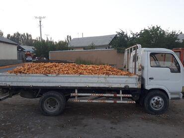 Грузовики - Сузак: Сатылат южин грузовик машина 2008 год объём 2.5 4. 5 тонна жук алат