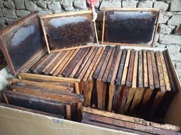Продаю пчёлыный суш и ящик 20 штук в Кара-Суу