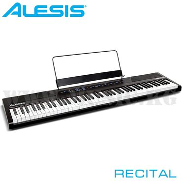 Реалистичная - Кыргызстан: Цифровое фортепиано Alesis RecitalAlesis Recital - компактное и