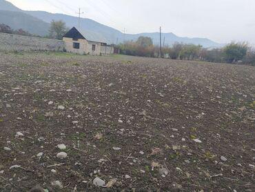 Недвижимость - Балакен: Продам 40 соток Строительство от собственника