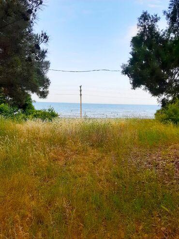 nabran - Azərbaycan: Satış 62 sot vasitəçidən