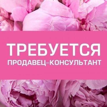веб бишкек девушка in Кыргызстан | РАЗРАБОТКА САЙТОВ, ПРИЛОЖЕНИЙ: В успешно развивающююся компанию требуется консультант по продажам муж