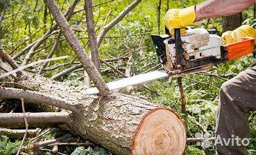 Спил деревьев!! Любой сложности!! Тел